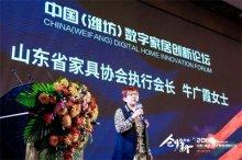 牛广霞执行会长:新时代,家居人须知行合一  确保企业健康发展